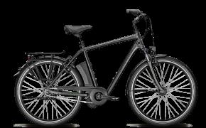 Elektrinis dviratis Agattu XXL Impulse 8R HS