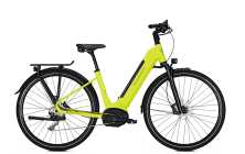 elektrinis dviratis ENDEAVOUR MOVE B9